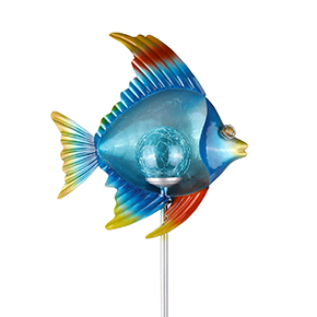 Angelfish Crackle Ball